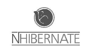 >NHibernate
