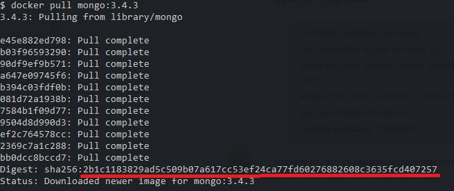Docker image tags